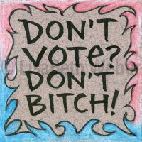 don't_vote_don't_bitch_pin©LisaBethWeber