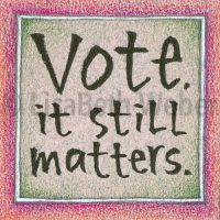 vote_it_still_matters_pin©LisaBethWeber