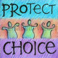 protect_choice_pin©LisaBethWeber