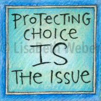 protecting_choice_is_the_issue_pin©LisaBethWeber