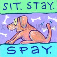sit_stay_spay_pin©LisaBethWeber