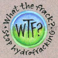 what_the_frack_pin©LisaBethWeber